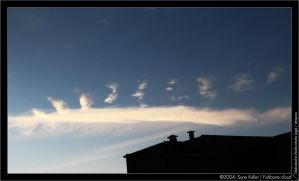 Fishbone cloud by sirlatrom