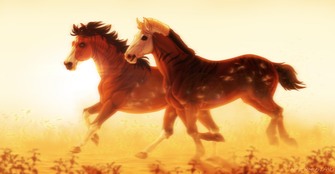 :|: Gallop Through Heaven :|: AT by Majorest