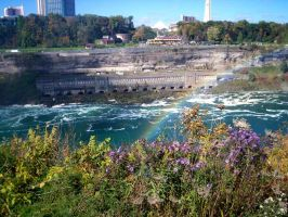 Niagra Falls Rainbows and wildflowers by caspercrafts