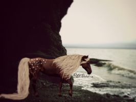 First Place || Dreams at the Sea by Adarhi