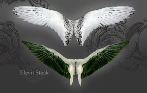 E-S Wings III by Elevit-Stock