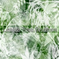 Leaf and Tree PS Brushes by stephieg24