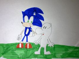 Sonic and Fone Bone by SuperSmash6453