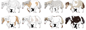 Pregnant Paint Mares CLOSED by LazyOrchardAdopts