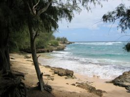 Mahaulepu Beach by chocolateir-stock