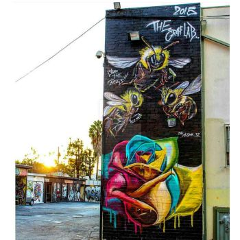 Save the Bees Mural by Nigma32