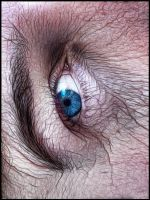 Hairy Eye by eRiQ