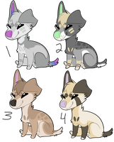 Adopts | Open by MiilkDog