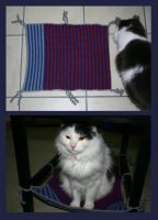 Chair hammock for Pepsi by KnitLizzy