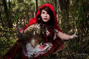 Little Red Riding Hood by Taichia-Photo