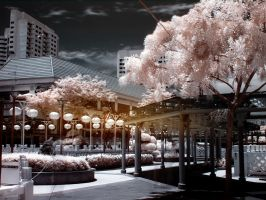 iNfraRed series - cHinatOwn 3 by shin-ex