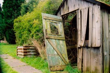 Auntie Mary's Shed by UbiquitousJamie