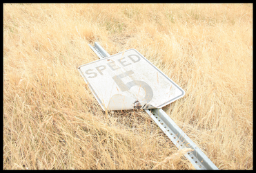 No Speed Limit by ifoundnemo