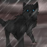 Wolf's Rain Blue by DangerousBallOfFur