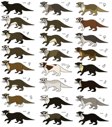 Otters of the Clans of the River by WolFkId27