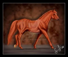 Man O'war by Jullelin