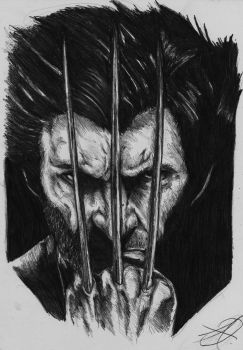 wolverine portrait by darkartistdomain