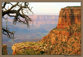 Grand Canyon by Astraea-photography