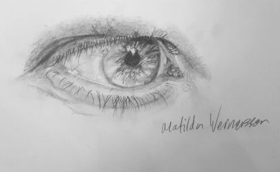 Realistic eye study by Fisktoffla