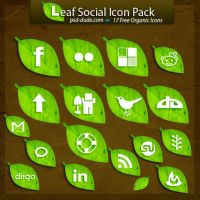 Free Leaf Social Icon Pack by PsdDude