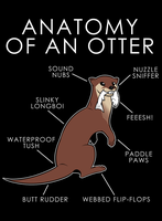 Anatomy of an Otter by artwork-tee