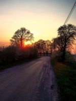 on the road by lybar