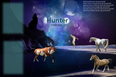 Horseland layout 2 by Haily742