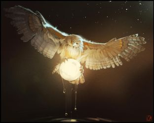 Owl who gets the moon every night from the river2 by GaudiBuendia