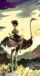 Ostrich Lady by ashwara