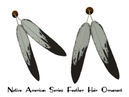 Native Series: Hair Feathers by Sheona-Stock