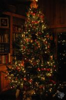 Elegant Christmas Tree by calger459