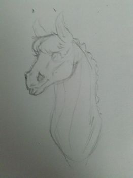 Horsey - W.I.P. by FatalIrish2000