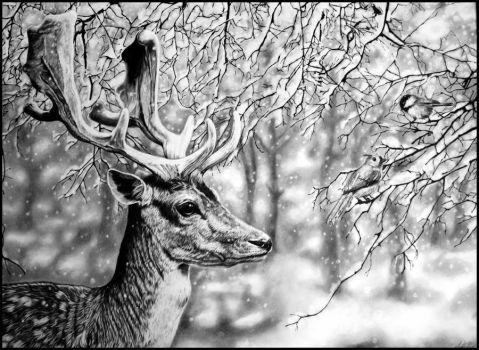 Fallow Snows by TubaQueen