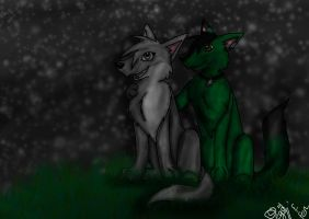 Two Wolves by elementalgoddragon