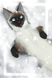 Snow Angel - Commission by WCRFE