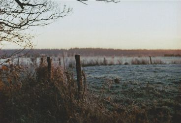 Winter Morning by anotherreverie