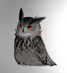 Eagle owl by pencilbread
