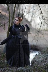 Evil Queen Gothic Stock 004 by MADmoiselleMeliStock
