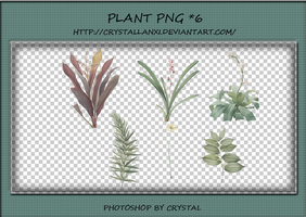 PNG PACK#7 - Plant by Crystallanxi