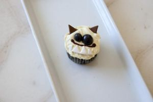 BonJour Monster Cupcake Fake by YourSweetTreat