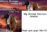 Beautiful Horse Avatar by Carillie