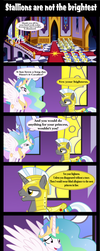 Stallions are not the brightest by Vector-Brony