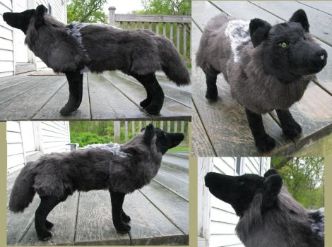 Realistic Black Wolf Plush Toy by Jarahamee