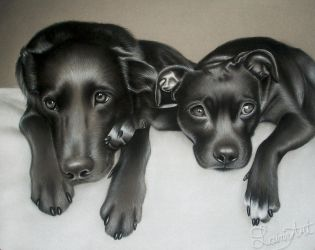 Avery's - Charcoal Commission by secrets-of-the-pen