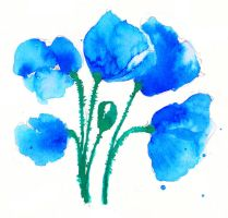 Blue Blue Poppies by grinar