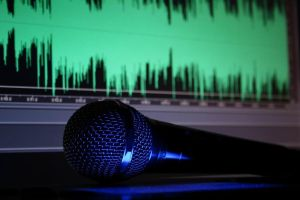 microphone 2 by senner