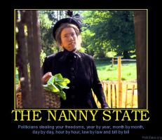 The Nanny State by James-Galt
