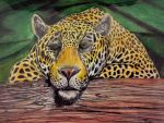 Jaguar Drawing by tpallier