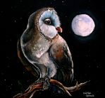 Owl in the Night by CalmGhosts