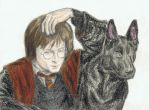 Harry Potter with his godfather by gagambo